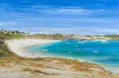 fridge-magnets-rottnest-artist-jenny-taylor
