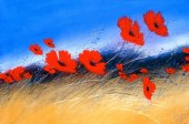 Poppy_Attention_4e4374e359687.jpg